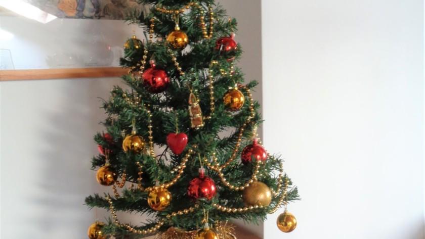 Le mie decorazioni di Natale